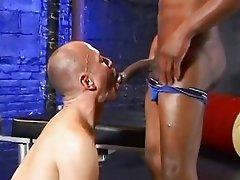 Bald guy is sucking big black cock in various exotic ways