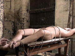Homo enjoys wild ramrod treatment