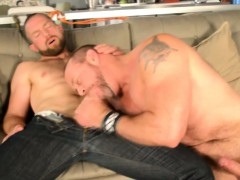 Hairy bears suck each others dicks