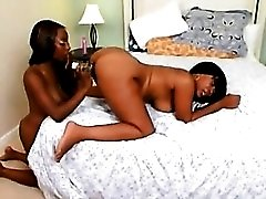 Two curvy black girls have lezzy sexy